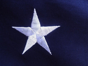 SEWN AND EMBROIDERED 3' X 5' COTTON 11 STAR FIRST NATIONAL FLAG