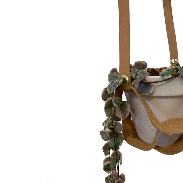 Nested Hanging Planter
