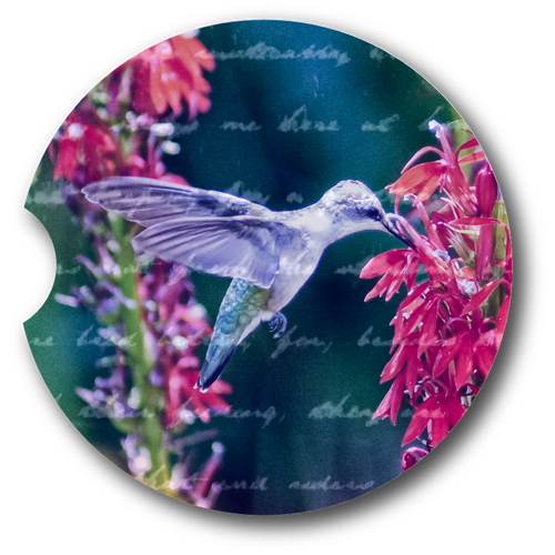 Hummingbird- Sandstone car coaster