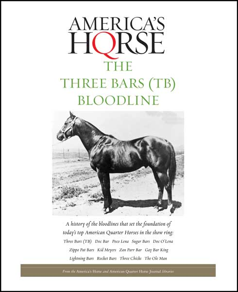 THE THREE BARS BLOODLINE Digital Book
