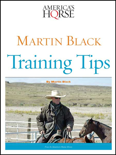 MARTIN BLACK TRAINING TIPS Digital Book