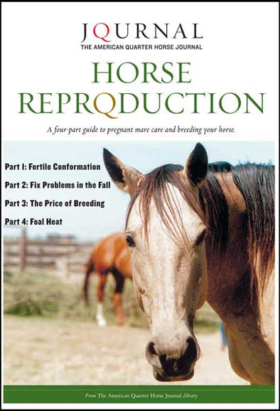 HORSE REPRODUCTION Digital Book