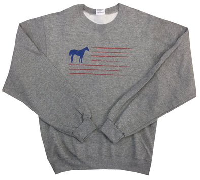 Sport Grey Flag Sweatshirt