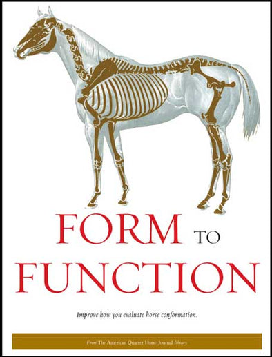 FORM TO FUNCTION Digital Book