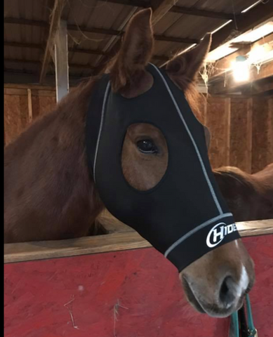 Hidez Compression Mask