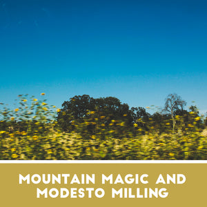Mountain Magic and Modesto Milling