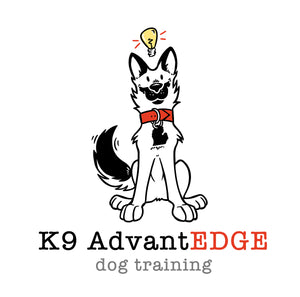 K9 AdvantEDGE Custom Dog Trainer Logo