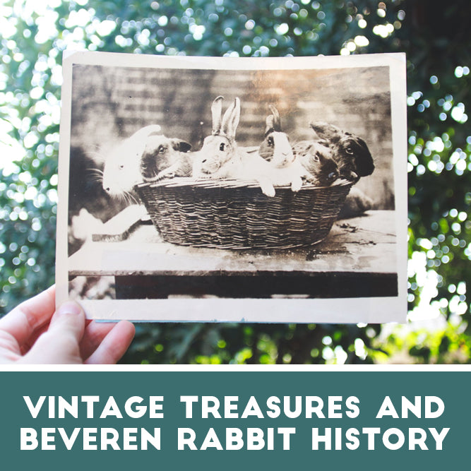 Vintage Treasures and Beveren Rabbit History
