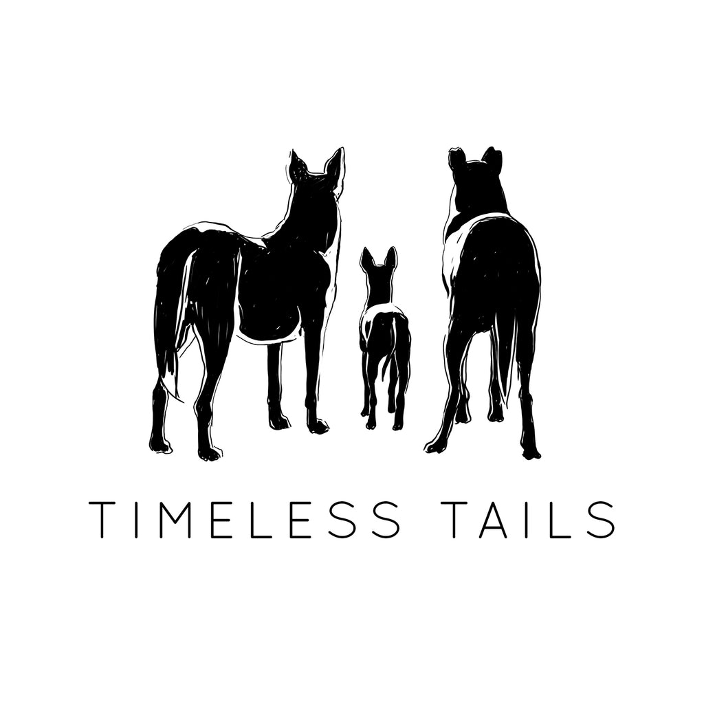 draft for timeless tails pet photography logo