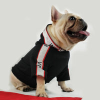 Cute Fashion Hoodies For Small to Medium Size Dogs - The Hoodie Store
