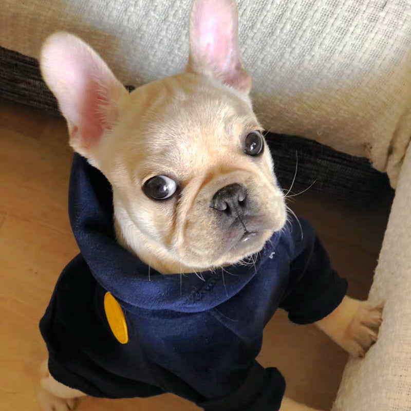 New Dog Clothe Hoodies for Winter - The Hoodie Store