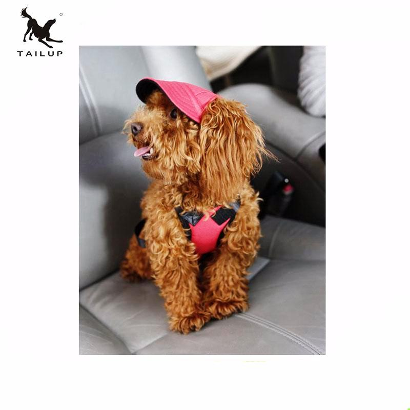 *MACHIKO* 🐶 Hat, Protect Your Dog's Eyes In Style!
