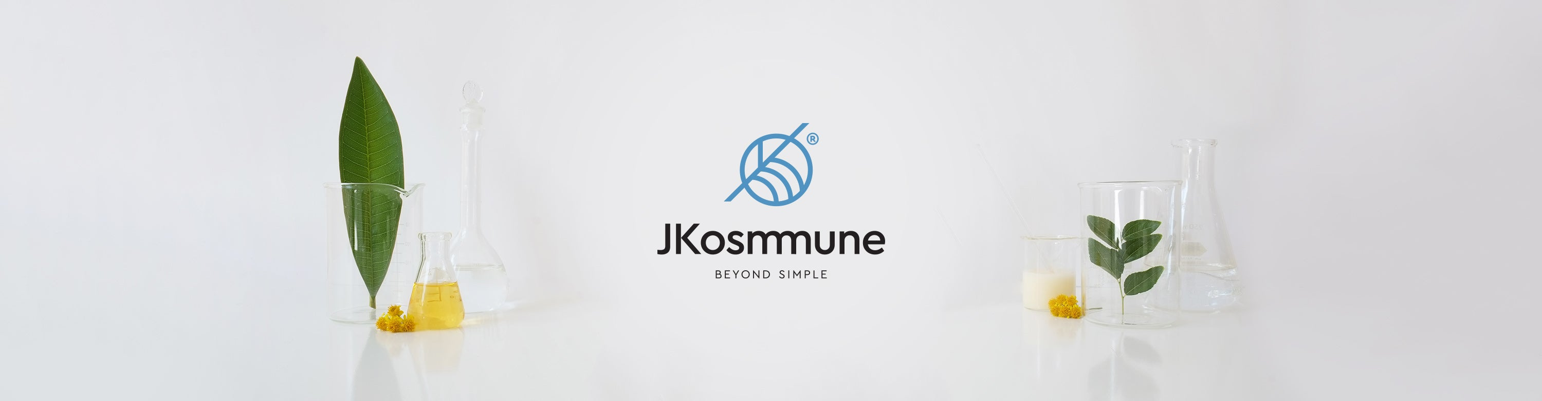 JKosmmune  beta-glucan sizofiran mushroom hydration skin care Schizophyllan