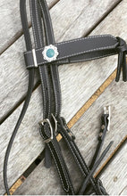Buffalo Bridles