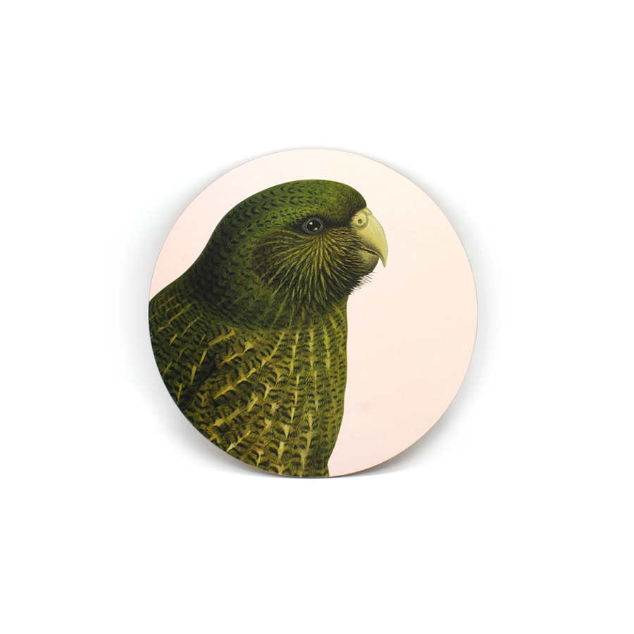 Hushed Bird - Kakapo Blush - Coaster