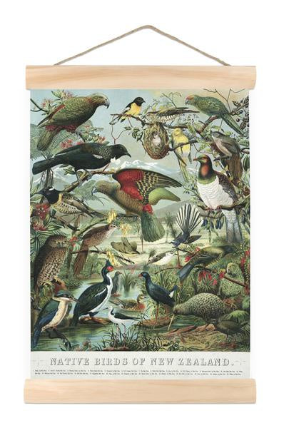 Native Birds Mini Wall Chart