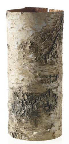Natural Birch- Small