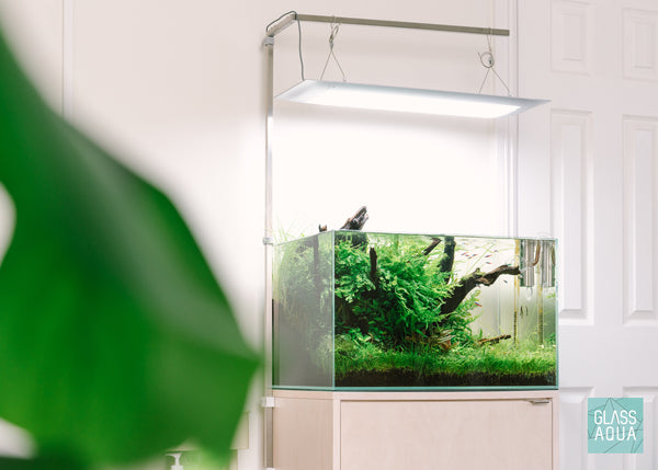 ONF Square Light Hanging Kit on Ultum Nature Systems 60U Planted Aquarium Tank