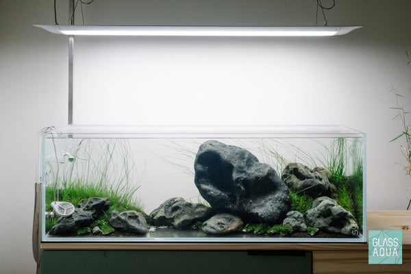 Ultum Nature Systems 90L Long Iwagumi Aquarium Tank