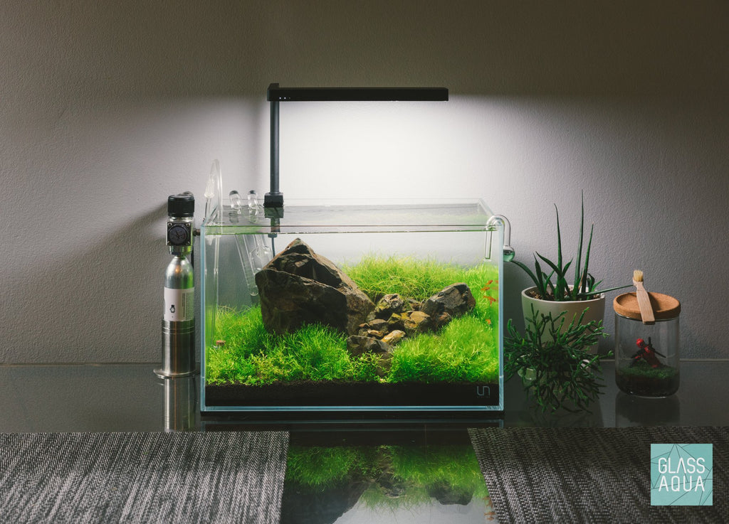 Shop ONF Flat Nano+ LED Light Lighting - Glass Aqua