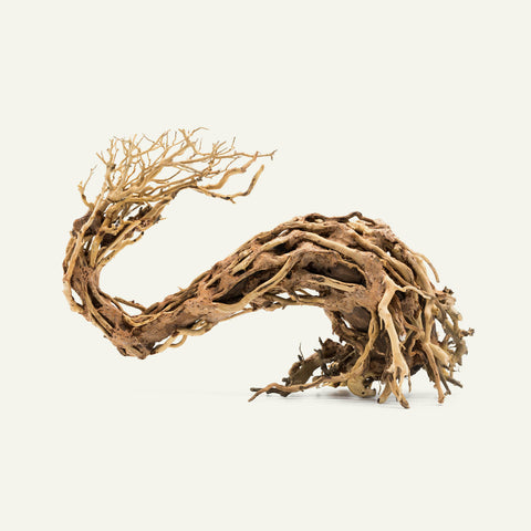 Shop Bonsai Tree Driftwood Wave Hardscape - Glass Aqua