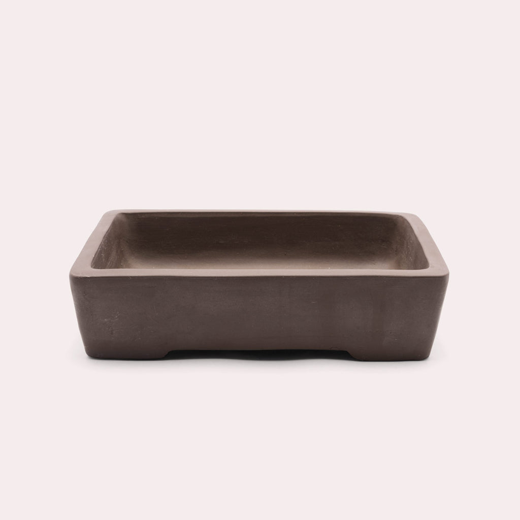 Shop Bonsai Planter Home - Glass Aqua