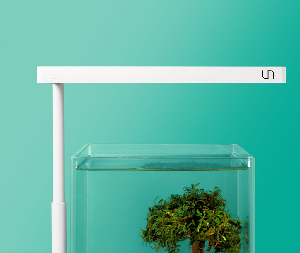 Shop UNS x ONF Flat Nano Stand LED Light Lighting - Glass Aqua