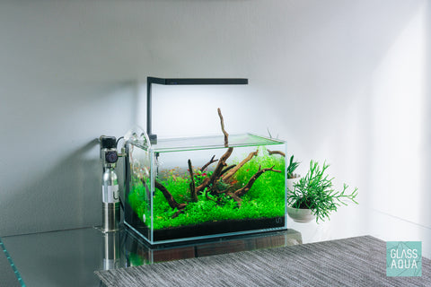 Shop Planted Aquarium Mini CO2 System Kit CO2 - Glass Aqua