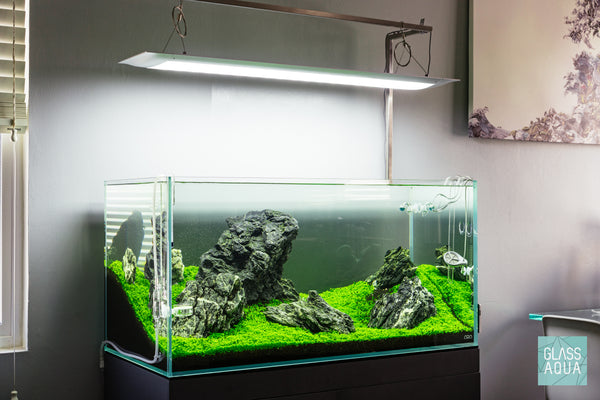 Glass Aqua ADA 90P Planted Aquarium Tank Iwagumi