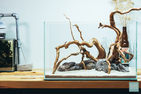 Shop Spider Wood Hardscape - Glass Aqua