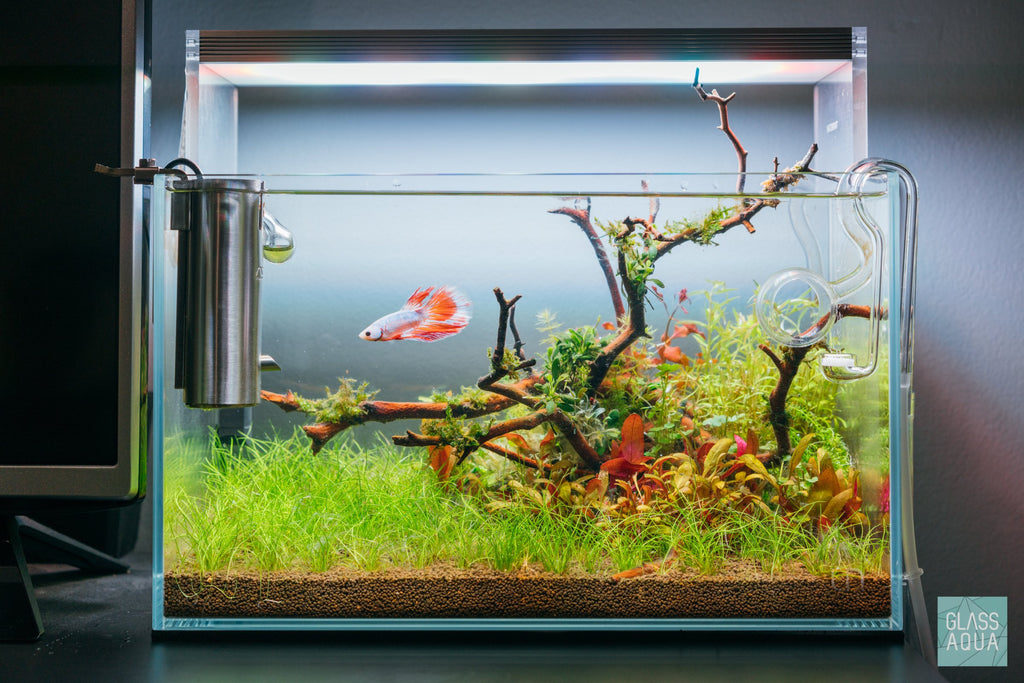 Shop UNS Rimless Nano Glass Aquarium Tank Aquarium Tanks - Glass Aqua