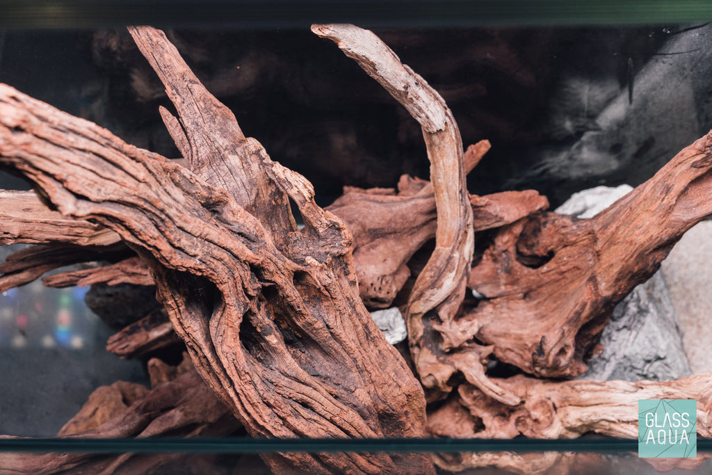 Shop Amazon Wood Hardscape - Glass Aqua