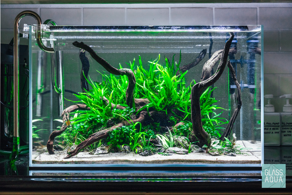 Ultum Nature Systems Low Light Easy Planted Aquarium Tank