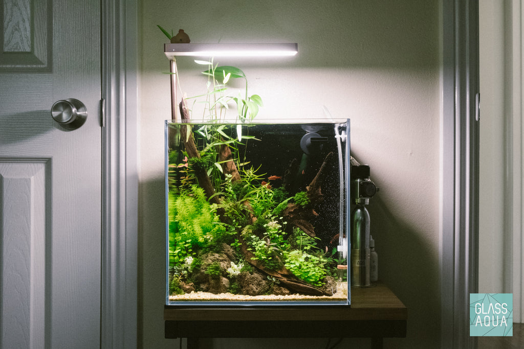 Planted Aquarium Tank Disposable CO2 Nano Kit