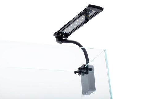 Shop Dymax Flexz Nano LED Light Lighting - Glass Aqua
