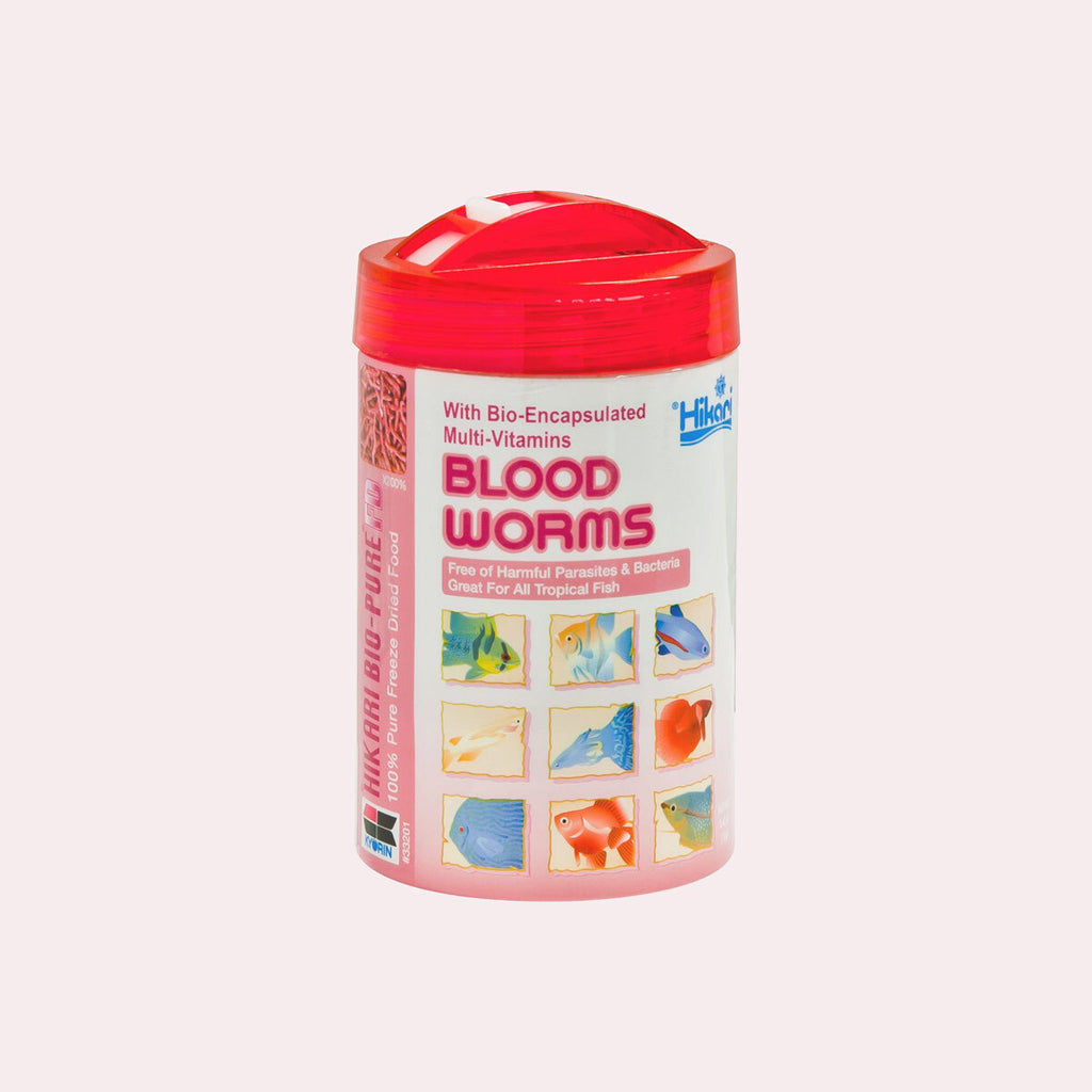 Shop Hikari Freeze Dried Blood Worms Food - Glass Aqua