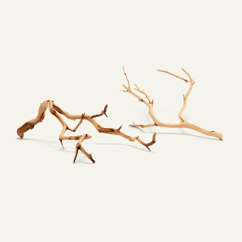 Manzanita Twig Wood - Glass Aqua