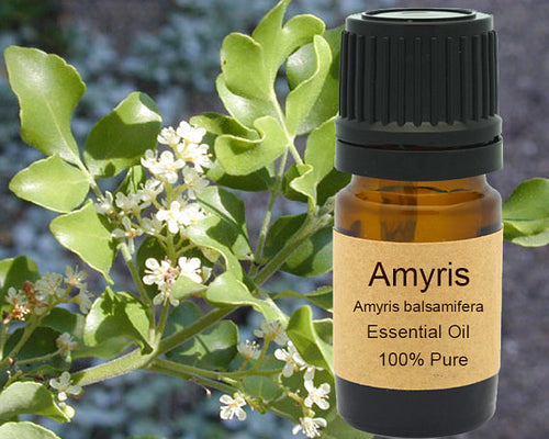 Amyris Essential Oil  5 ml, 10 ml or 15 ml