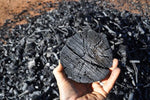 What's all the fuss over biochar?