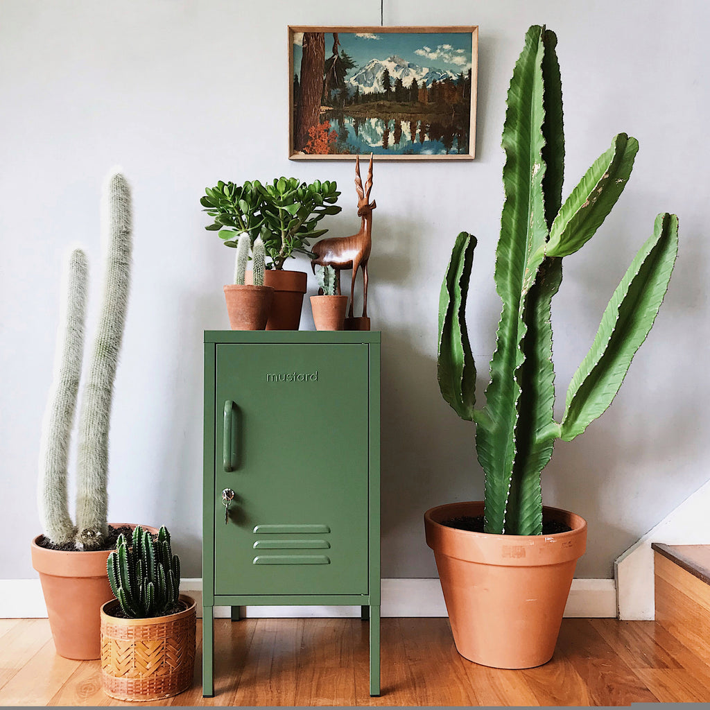 Tribe and us with mustard made olive green locker and plants