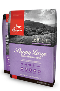 Origen Large Breed Puppy Food