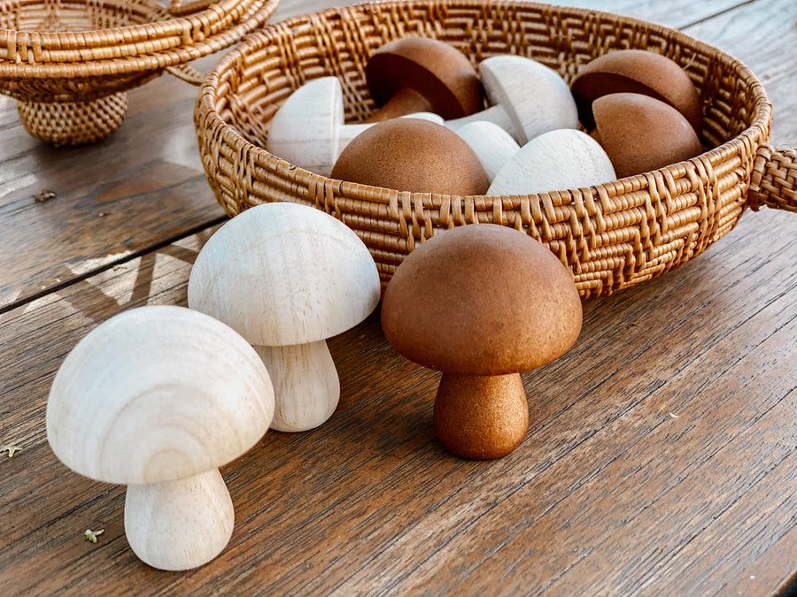 Mushrooms - Natural (set of 10)