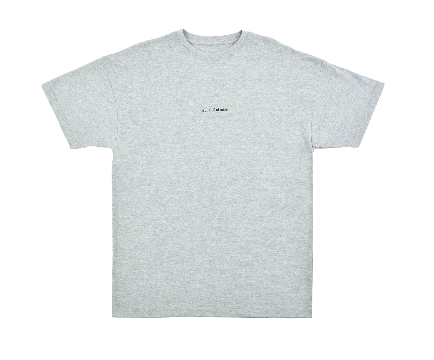 A (FRND) of Mine Basic T-shirt Grey