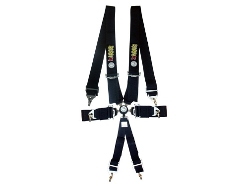 Monza 6 Point Harness