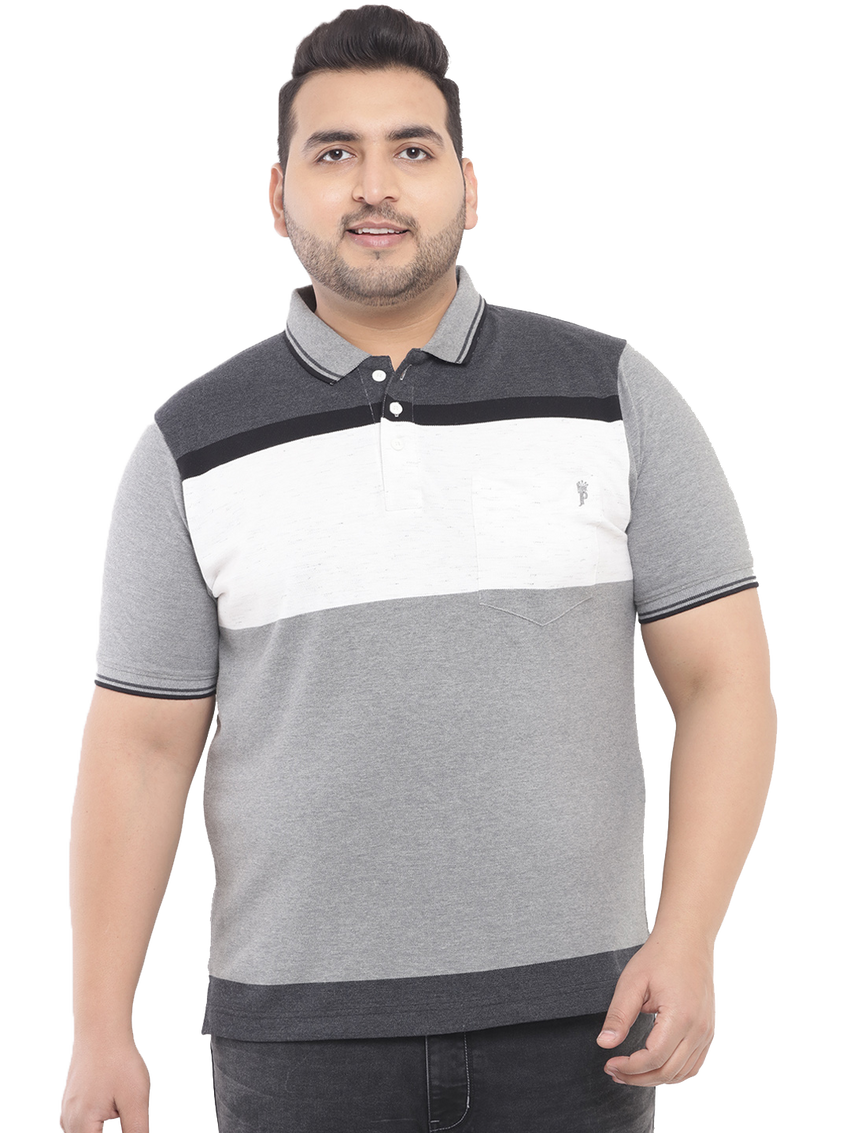 Anthra Polo T-Shirt-3193