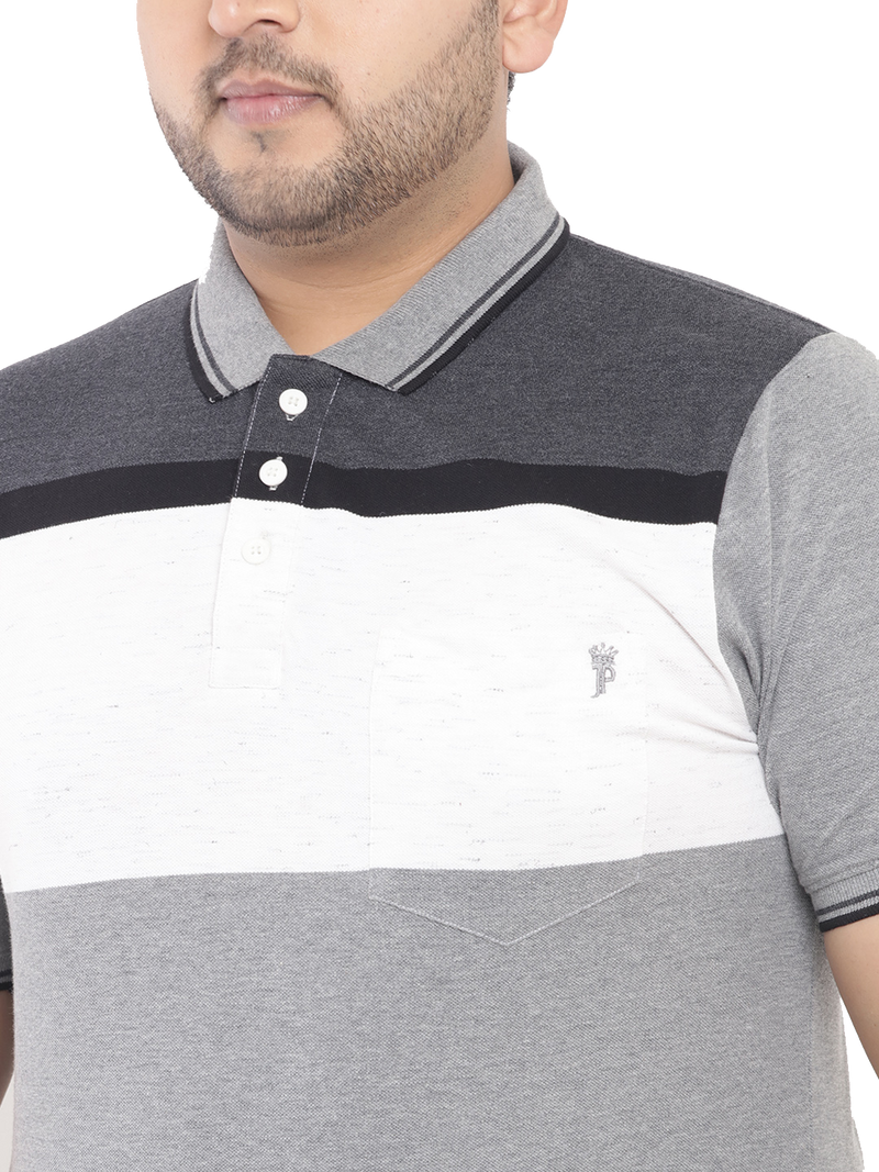 Color Blocked Anthra Polo T-Shirt-3193