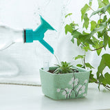 2 in 1 plastic Sprinkler Nozzle Converts Your Empty Bottle Into A Watering Can