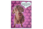 I've been Plucking up the Courage to ask you, Valentines Card - BuyAbility South Africa