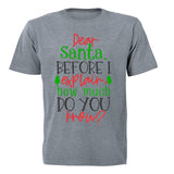 Santa, How Much Do You Know? - Christmas - Kids T-Shirt - BuyAbility South Africa