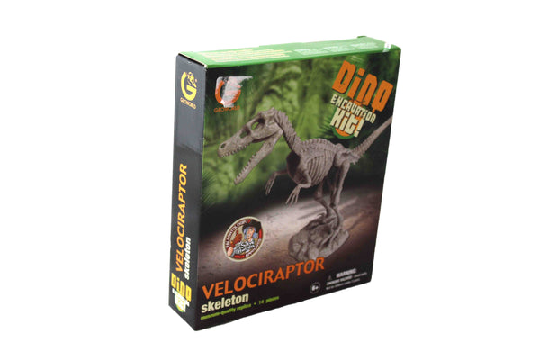 Velociraptor Skeleton Dino Excavation Kit